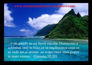 IOSIF (6)
