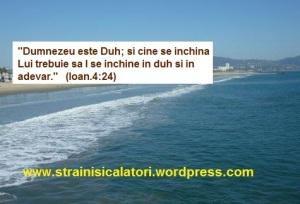 """blogul lui """"DUTU"""""""