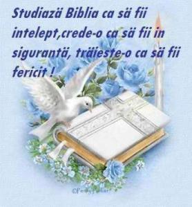 COPILARIA LUI ISUS (Viata lui Hristos 1.d)