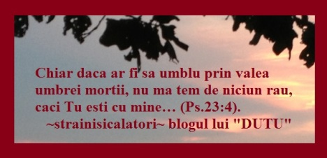 """""""ÎNCREZĂTORI ÎN EL"""""""
